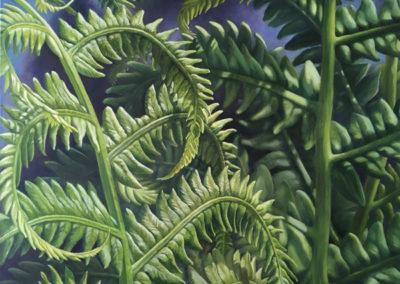 "BJ, Eckardt, Wayfaring Ferns, Oil on Linen, 48""x 36"""